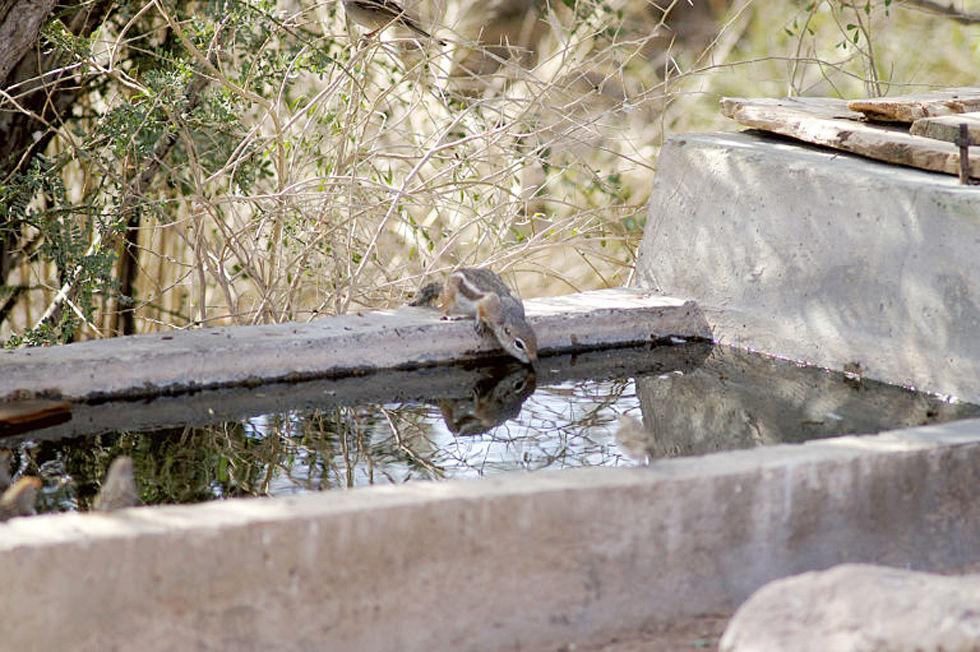 Water cachements