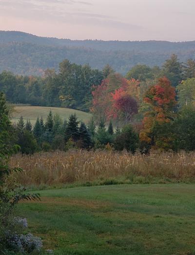 09262020 Bramblings Leaves