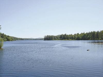 A Maine pond