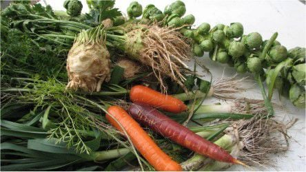 0523 Homeyer MAG_Celeriac with carrots, leeks and Brussels sprouts3.jpg