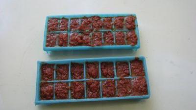 10092021 Homeyer freeze tomato paste