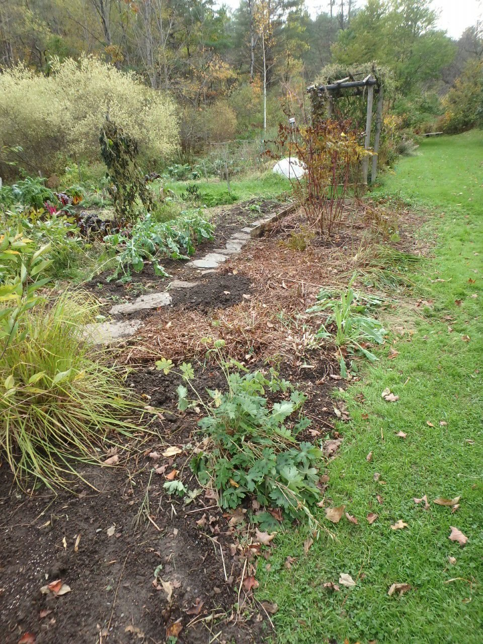 MAG_Most perennials were cut back in this bed.jpg