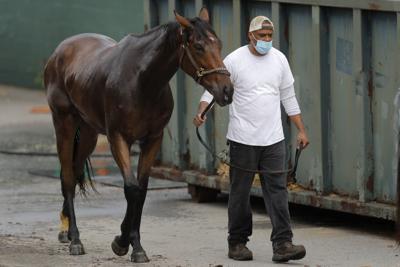 0516 Virus Outbreak Horse Racing