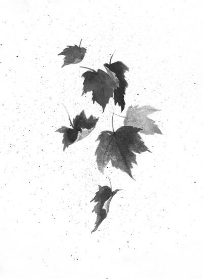 MAG_TOS_Foliage_2019.jpg