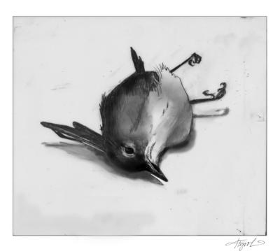 10092021 TOS_Migration-bird