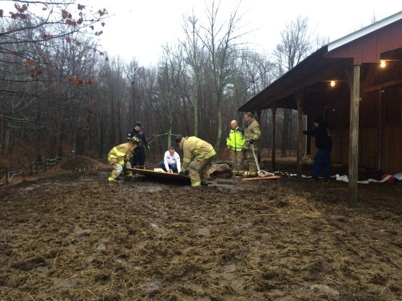 Derry firefighters help horse stuck in mud | New Hampshire ...