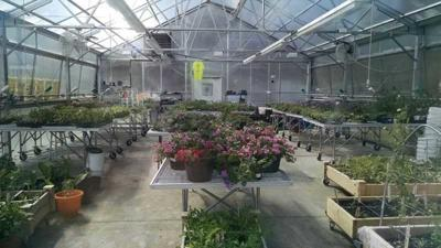 Sanborn High prepares for 18-month project to build greenhouse