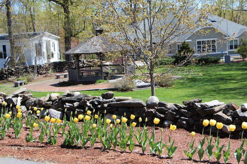 Hope blooms at Pinkerton