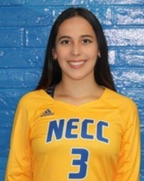 NECC nets new record: 11 Academic All-Americans