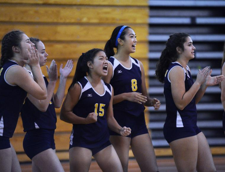 SLIDESHOW: ANDOVER VOLLYBALL PLAYS FOR STATE CHAMPIONSHIP ...