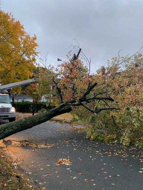 UPDATE: Storm downs trees, knocks out power, cancels classes