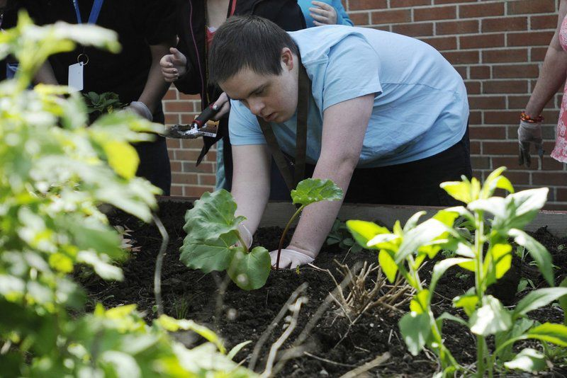 Special needs students sowing success at Haverhill High | Haverhill ...
