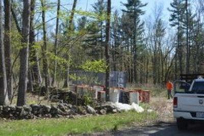 Salem Town Forest cleanup continues