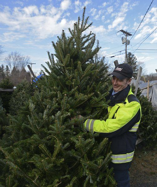 Local Christmas Trees: Tree Sales Benefit Local Charities