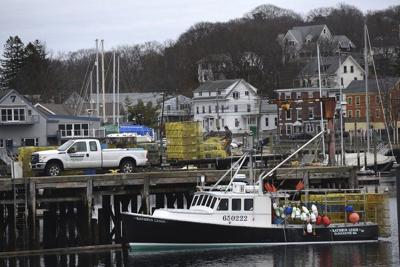 Report: Gloucester landings down 8%, value static in 2018