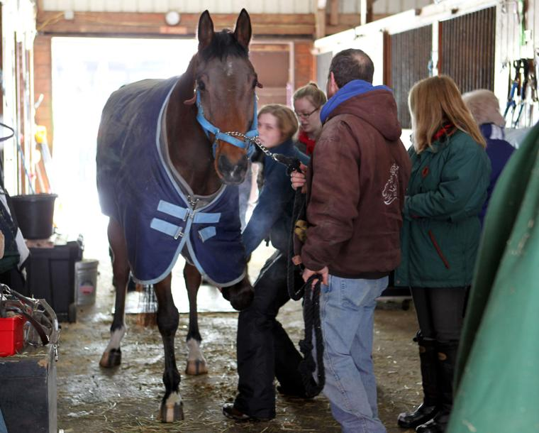 Slideshow Tech Rescue At Flying High Stables Eagle