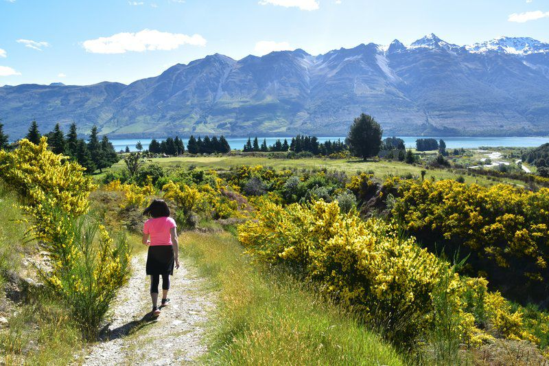 Middle-earth and beyond: To experience New Zealand's rugged beauty, go by camper van
