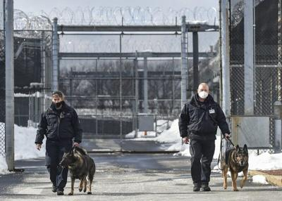 Two Sheriff's Department canines retire