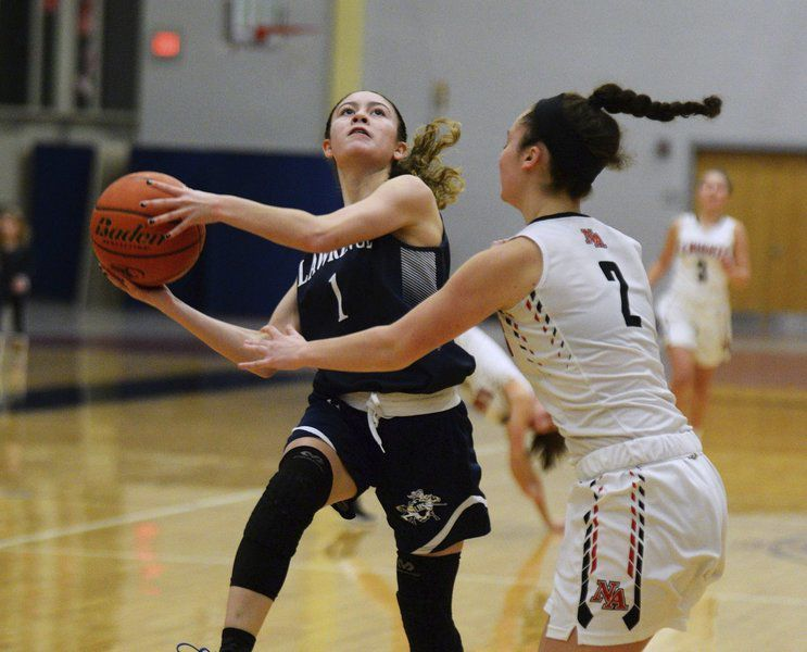 Area Girls Basketball Scoring Leaders
