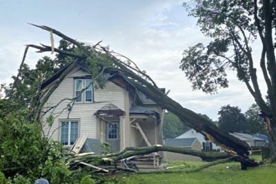 Tree falls on house in Bradford