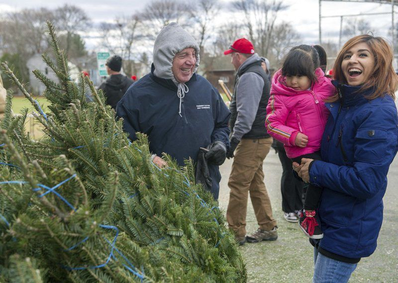 Spreading Christmas cheer, one tree at a time