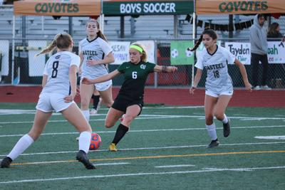 After Emotional Senior Night Campo Verde Girls Hit Soccer Playoffs