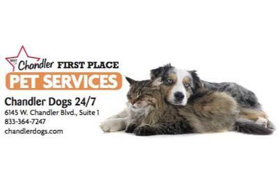 Chandler Dogs 24/7  6145 W. Chandler Blvd., Suite 1  833-364-7247