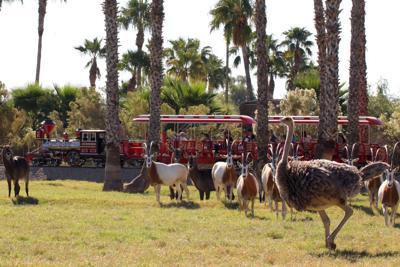 Wildlife World Zoo tops Reader's Digest list