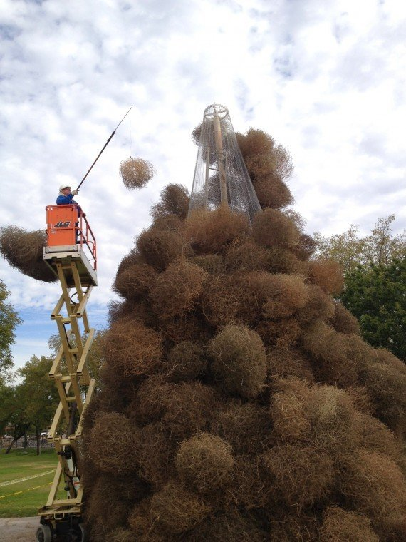 Chandler workers prep tumbleweed tree for Christmas event ...