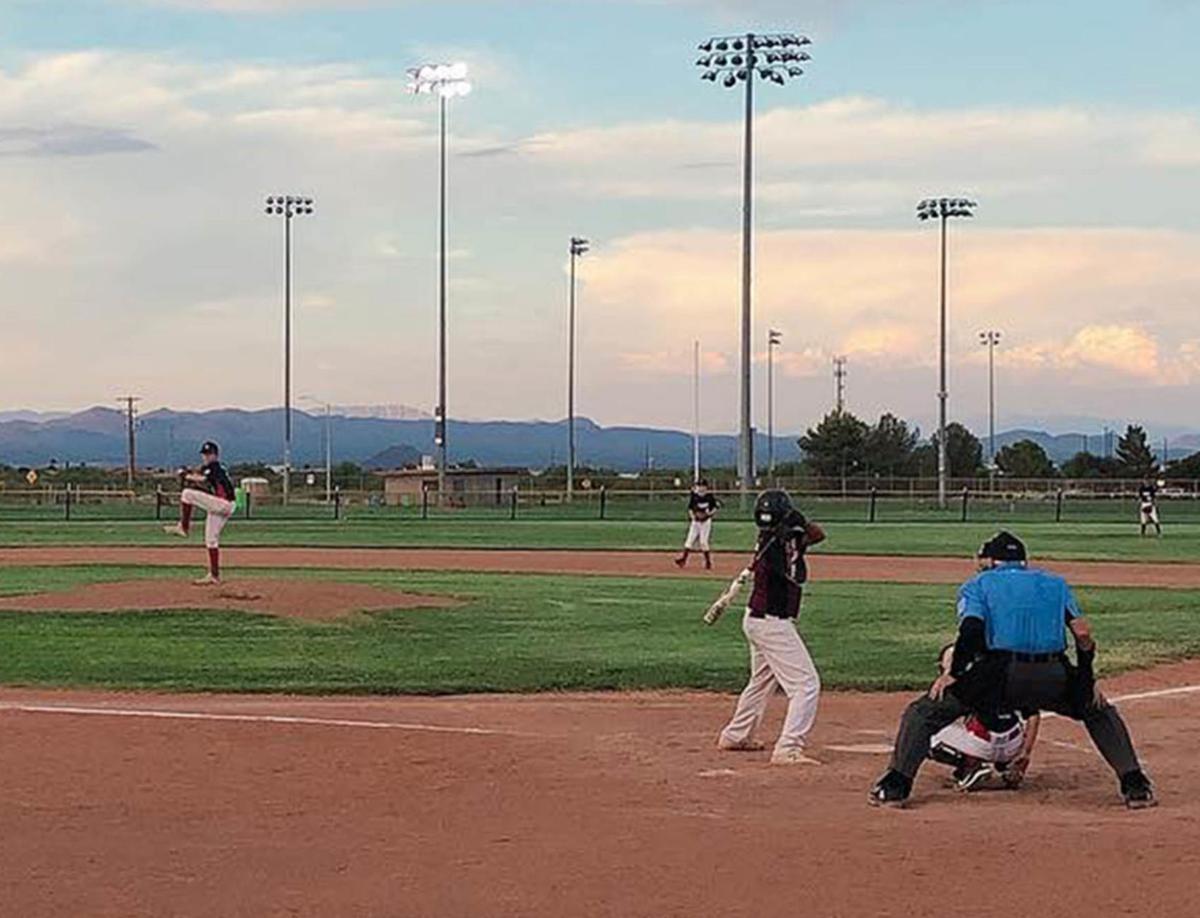 East Valley Little Leagues Postpone Season Until May Sports Eastvalleytribune Com