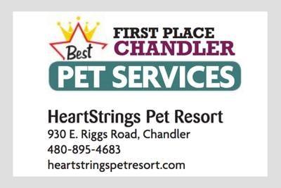 HeartStrings Pet Resort 930 E. Riggs Road, Chandler