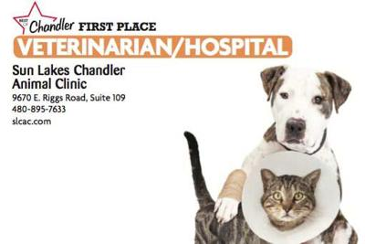 Sun Lakes Chandler Animal Clinic  9670 E. Riggs Road, Suite 109  480-895-7633