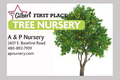 A & P Nursery 2601 E. Baseline Road