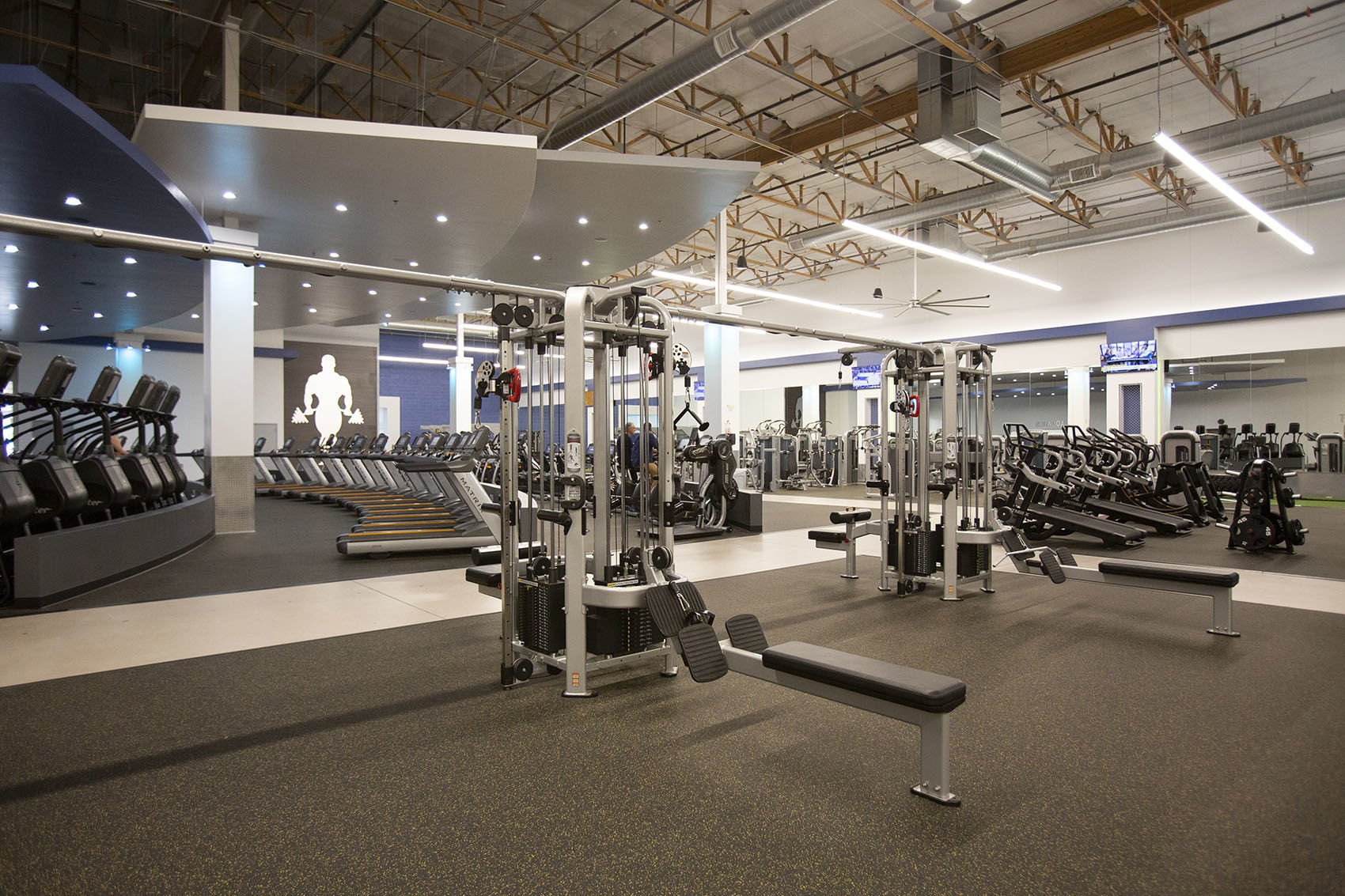 Gold s gym makes return to east valley sports