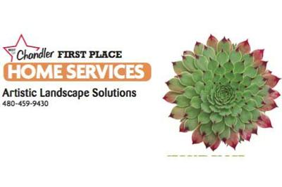 Artistic Landscape Solutions 480-459-9430