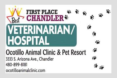 Ocotillo Animal Clinic & Pet Resort 3333 S. Arizona Ave, Chandler