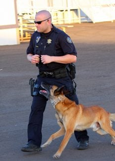 Drug dogs keep schools clean, officials say