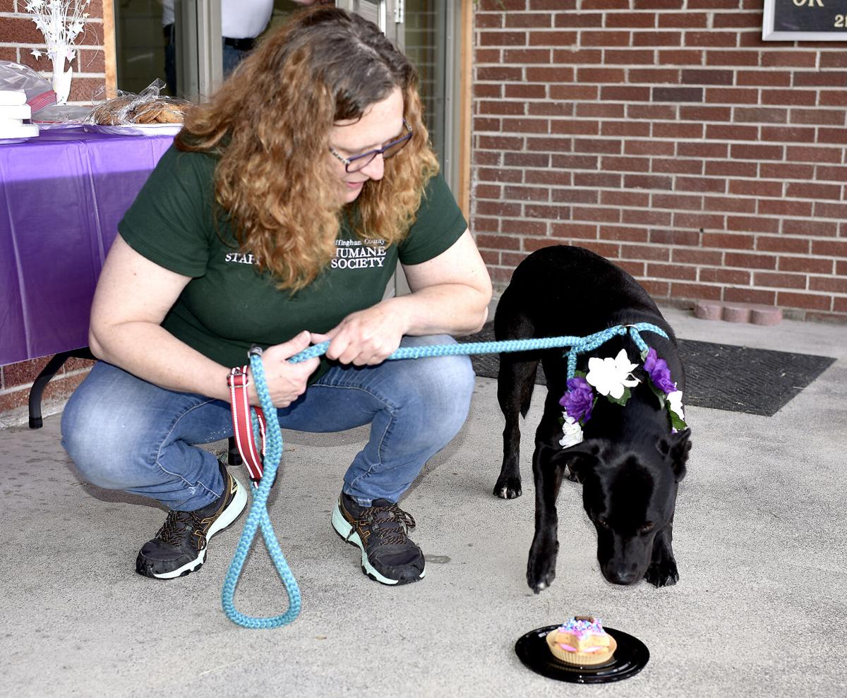Charis gets a party and new home