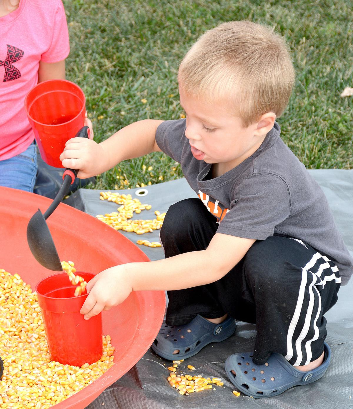 Harvest festival and corn maze