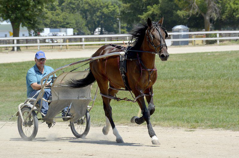 Effingham County fair events see high attendence