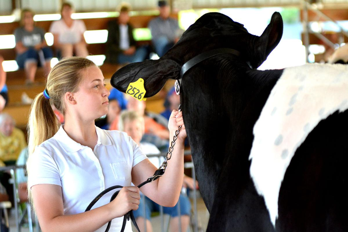 Majority of fair canceled, queen contest only event