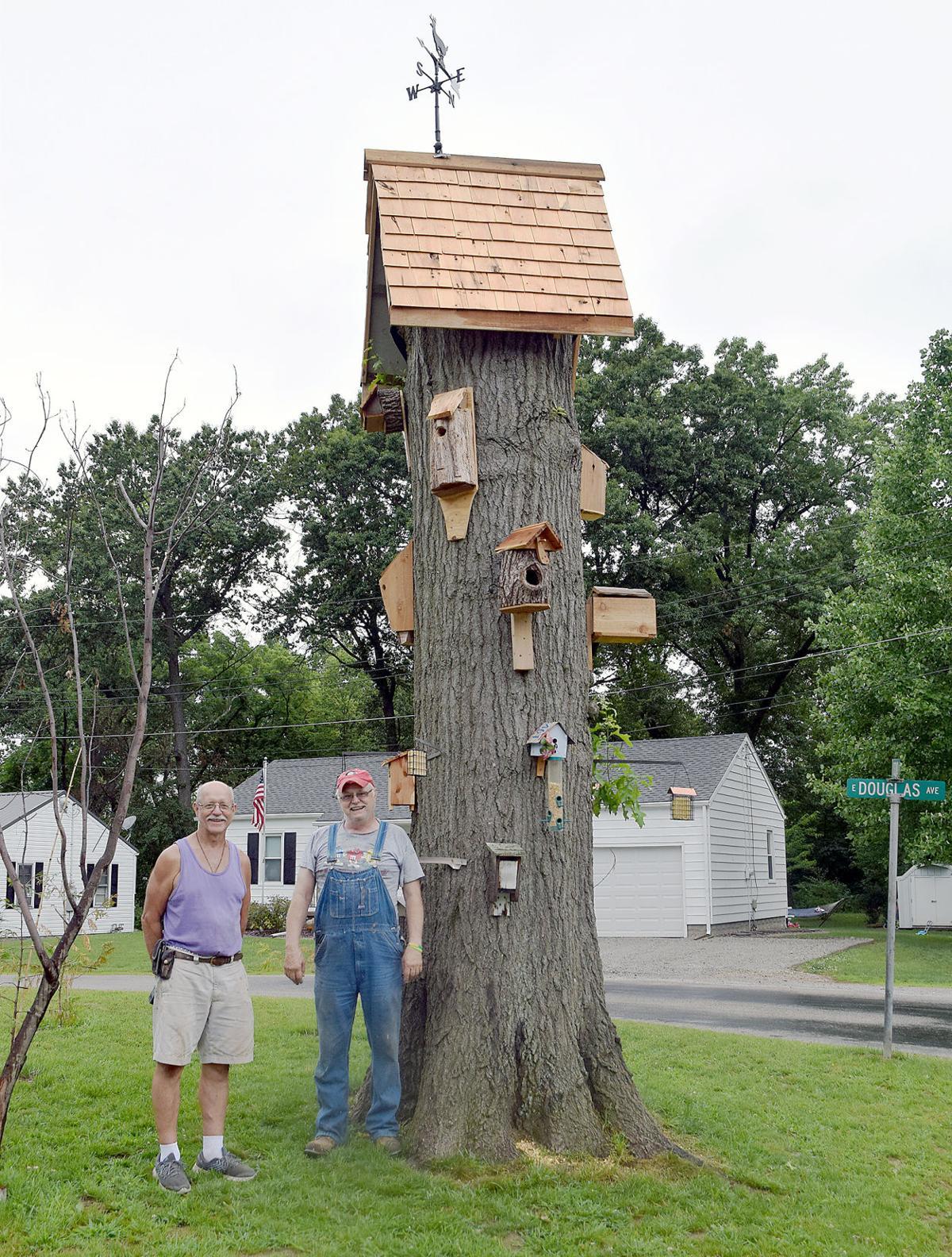 20200701-nws-birdhousespic2