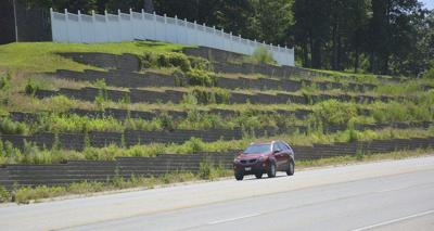 Overgrown landscaping causes eyesore, passersby say