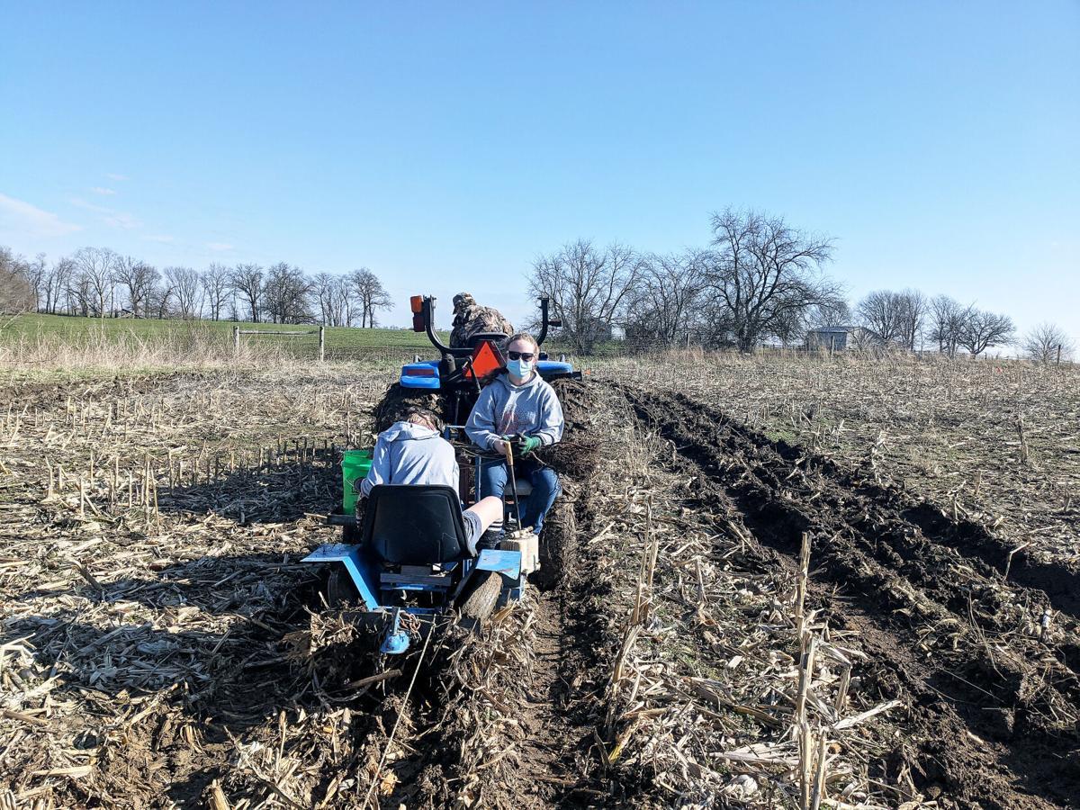 Laney Megan tractor.jpg