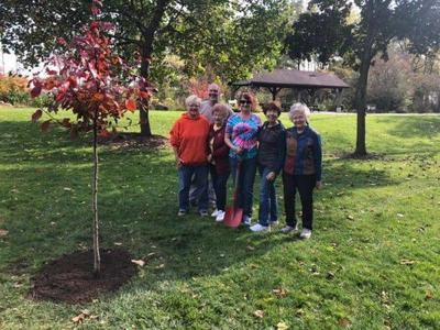 Middlebury Garden Club partners with Parks Department