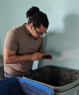Local worm wrangler develops composting service