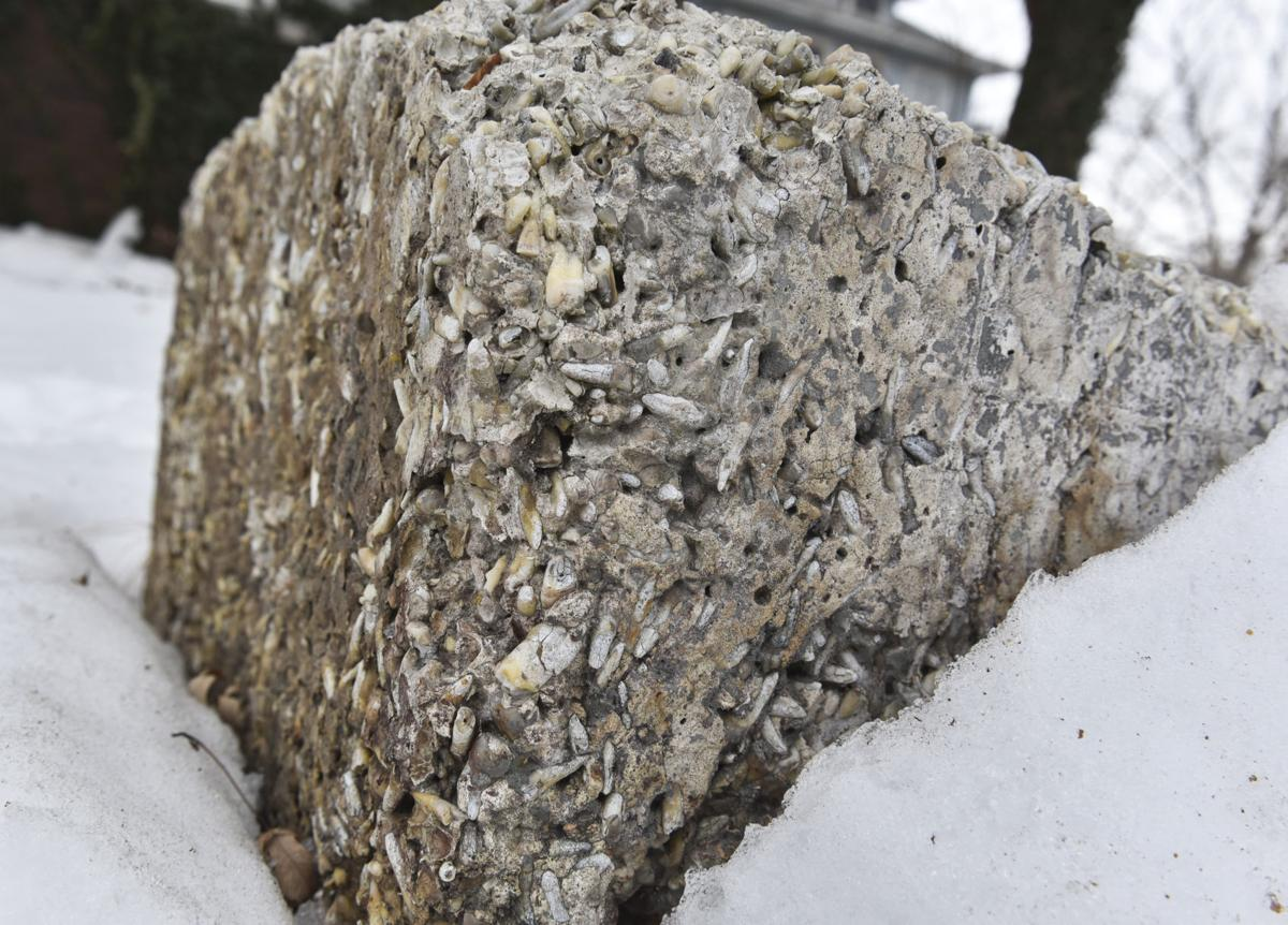 Concrete block full of human teeth in Elkhart serves as a memorial to dentist's dog