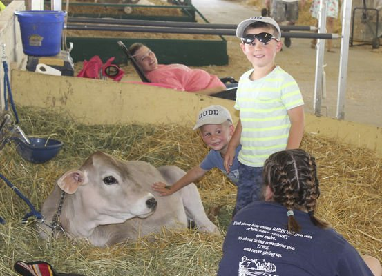 A little heat won't deter county fair fans | News | elkharttruth com