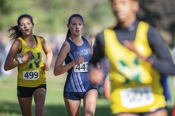 A healthy Dibley aims for state finals