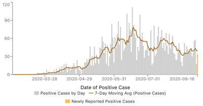 Elkhart County covid case graph Aug. 17, 2020